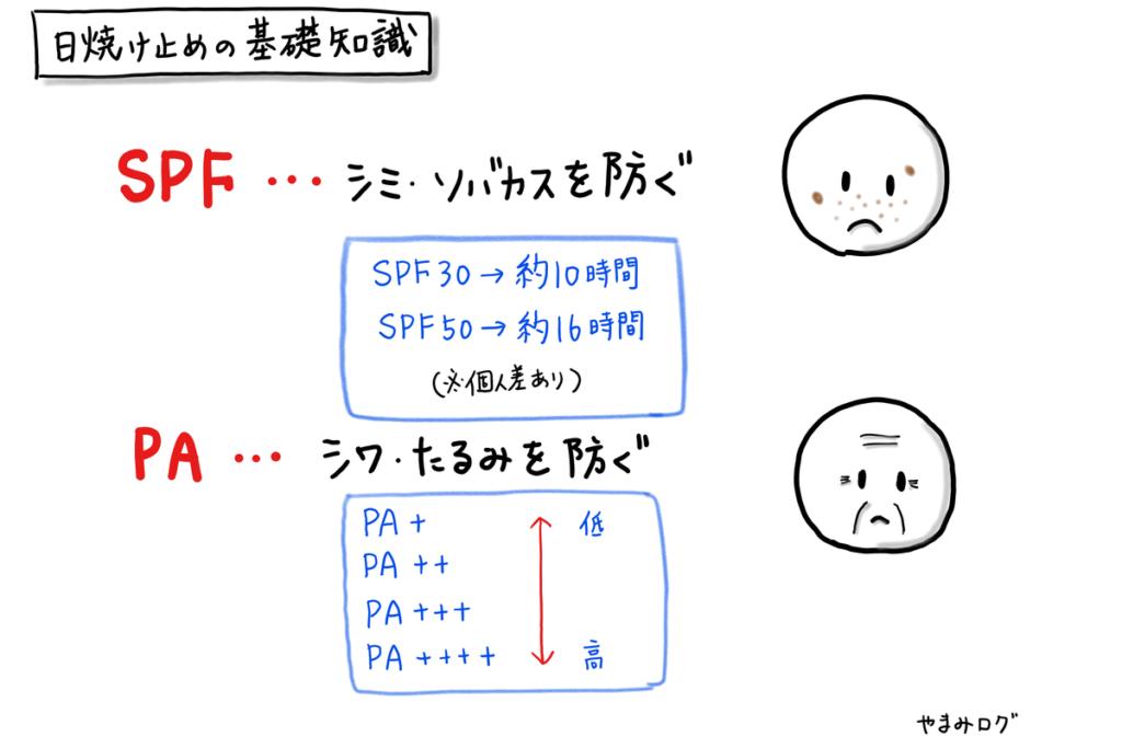 日焼け止めのSPFの基礎知識